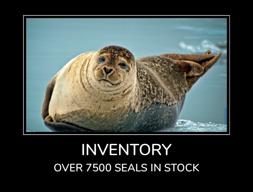 Inventory - Over 7500 seals in stock
